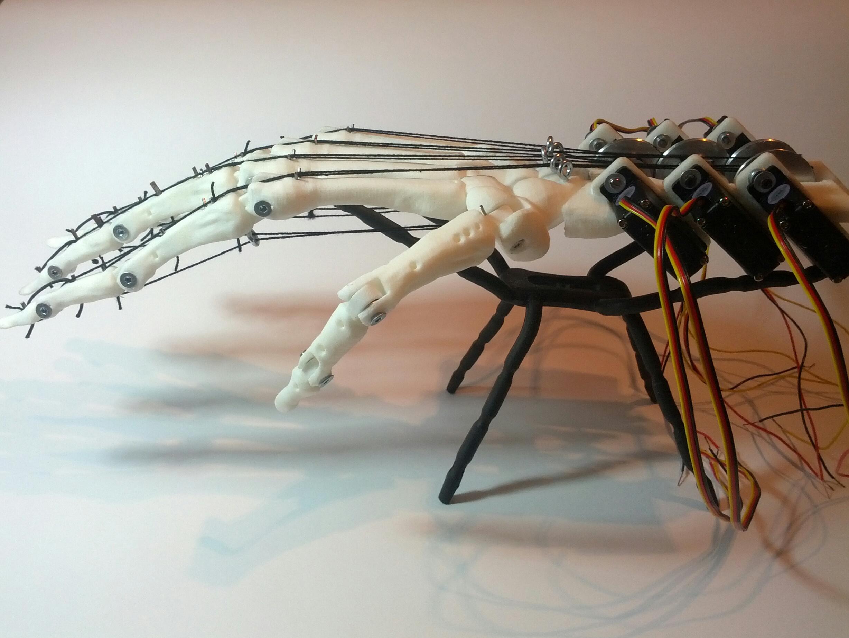 mano biomeccanica bio meccanica